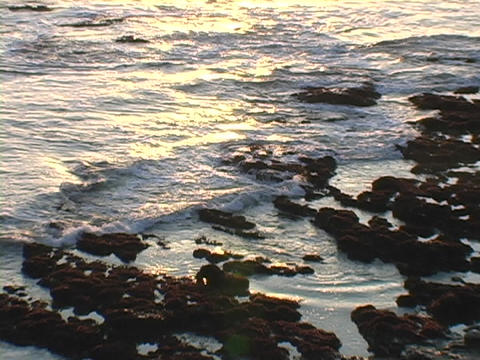 Ocean waves roll onto a rocky coastline Live Action