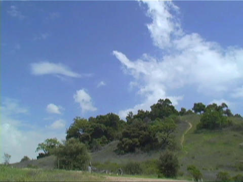 Clouds move quickly over a patch of trees Stock Video Footage
