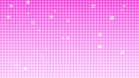 014 sakura GinghamCheck 01 Animation