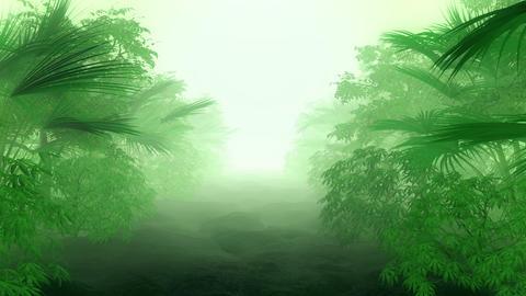 Jungle (Loop) Animation
