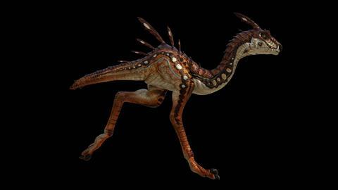 Dinosaur Raptor Running GIF