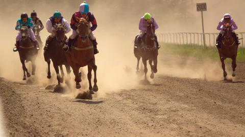 Horse Racing. Slow Motion Footage