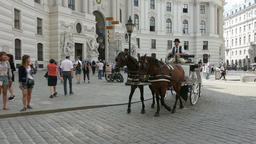 carriage horses in Michaelerplatz in Vienna Footage