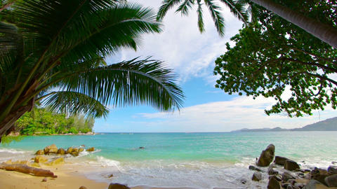 Beautiful. blue water of a tropical sea. sandy beach beneath a coconut palms Footage