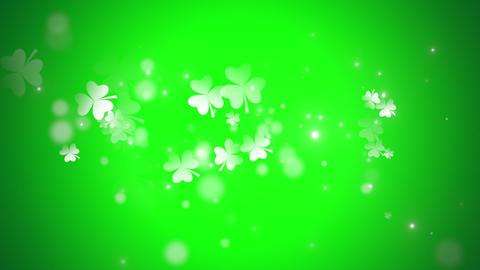 Animation Saint Patricks Day holiday background with motion green shamrocks Animation