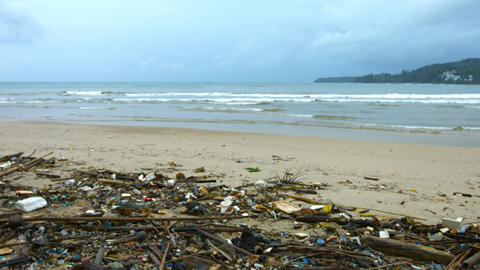 Garbage and Litter on a Sandy Tropical Beach Footage