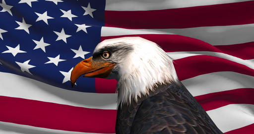 Bald eagle on the background of the USA flag Live Action