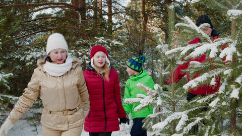 Friendly family holding hands walking in snowy woodland at winter vacation. Mom Live Action
