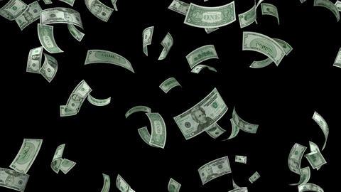 Money Falling Animation