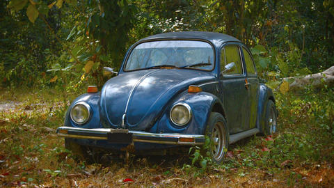 Old Volkswagen Beetle. Abandoned in the Woods Footage