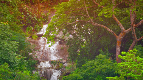 Dramatic Natural Waterfall in a Tropical Wilderness Footage