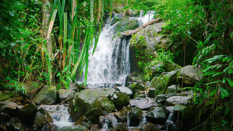 Peaceful Natural Waterfall in a Tropical Rainforest Wilderness. with Sound Live Action