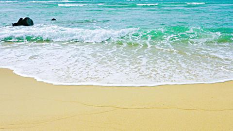 Gentle Tropical Waves on a Sandy Beach Footage
