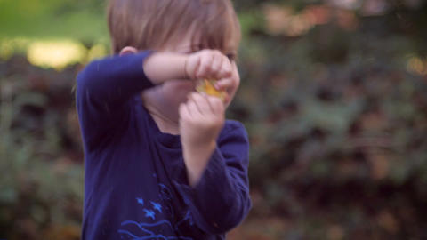 A perfectly healthy young cute toddler boy in a blue shirt standing in a park or Footage