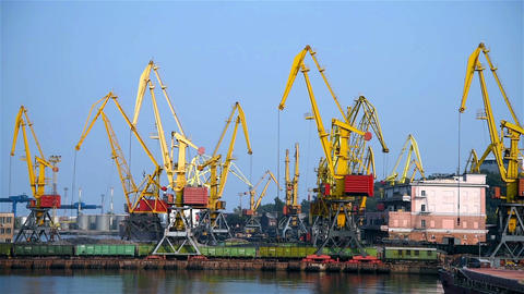 Tower Cranes In Port Footage