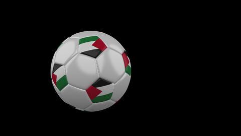 Palestine flag on flying soccer ball on transparent background, alpha channel Animation
