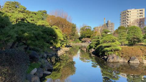 Sumida park013 Live Action