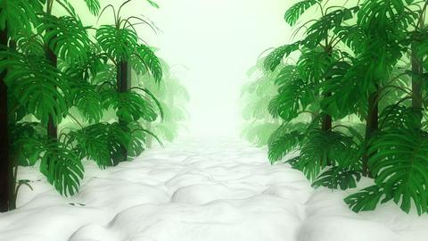 Monstera in Garden Videos animados