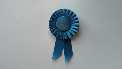 1st Place winner Rosette with blue ribbon Live Action