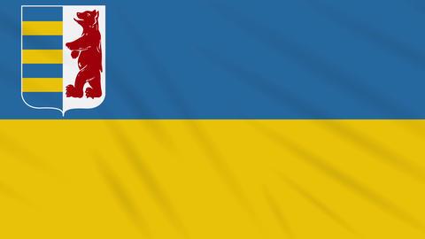 Zakarpattia Oblast flag waving cloth, ideal for background, loop Animation