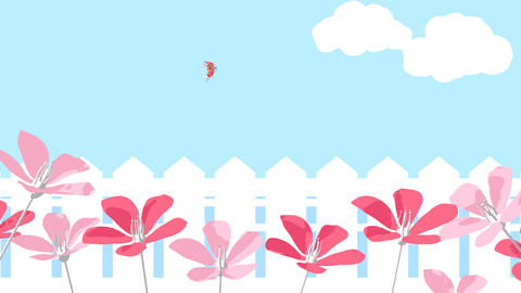 Flower Blooming Animation Animation