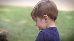 Slow motion of a cute blond two year old preschooler boy playing with a dinosaur Footage