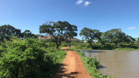 Yala, Sri Lanka, transport moves along the road along the lake Live Action