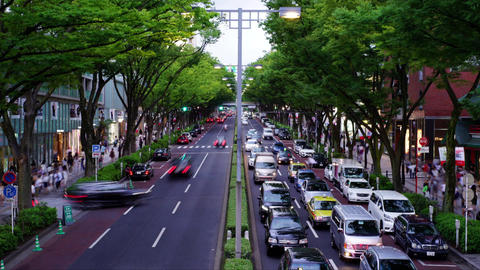 Omotesando Boulevard (Japan shopping street, time-lapse video) Live Action