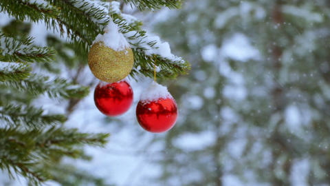 Christmas Balls on the Tree in the Forest and Snowfall Live Action