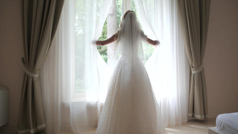 The view from the back of a beautiful bride with long hair in a beautiful dress Live Action