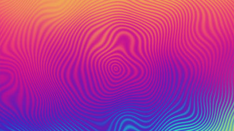 Abstract background with neon wave ripples. Wavy dynamic surface.Motion design Live Action