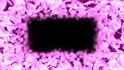 Spin of cherry blossoms,Frame,CG Animation Animation