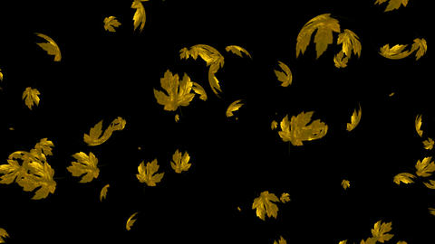 Looping Maple Leaves with Alpha Channel Animation