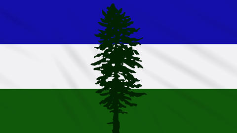 Cascadia flag waving cloth, ideal for background, loop Animation