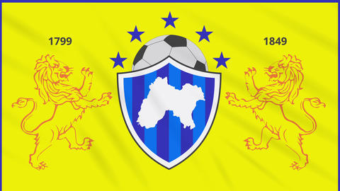 Panjab football flag waving cloth, ideal for background, loop Animation