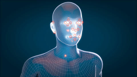 Human xray, human anatomy facial recognition, 3D Animated Animation