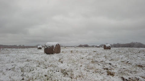 Snow field with stacks of straw on the background of a gloomy winter sky Live Action
