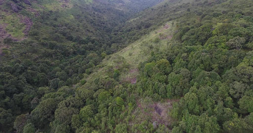 Aerial View. Flying over the beautiful mountain and beautiful forest Live Action