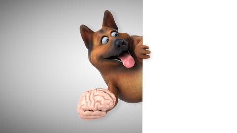 Fun german shepherd dog - 3D Animation Animation
