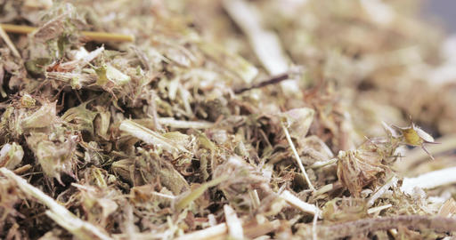 Motherwort grass in bulk Live Action