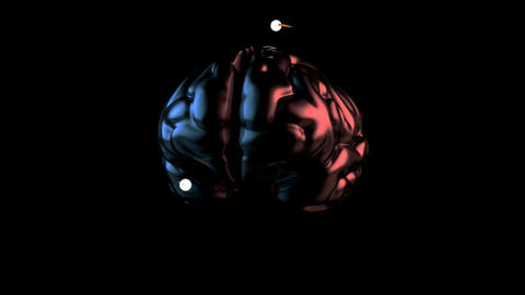 Brain - 3D Animation, Stock Animation