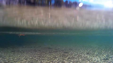 Detail of Lake Vaettern in Sweden Footage