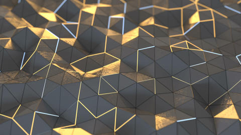 Low poly surface with glowing edges seamless loop 3D render animation Animation