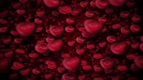 Red blood cells floating through blood and circulating in the vessels. Medical concept. 3D rendering Animation