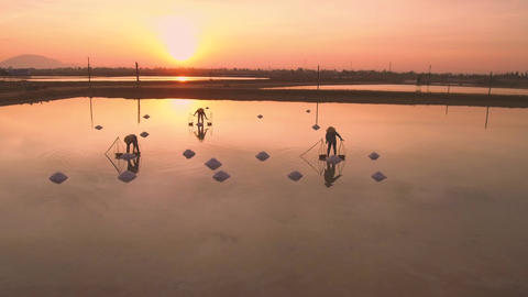 Lady farmers harvesting salt in their basket traditionally at sunrise in Hon Khoi province Live Action