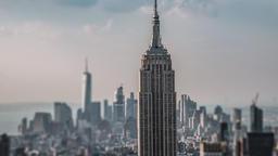 New York on my mind ビデオ