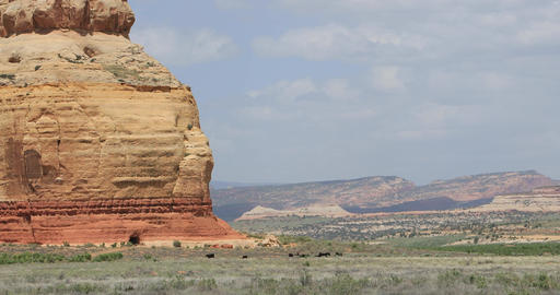 Church Rock and cattle southern Utah desert near Monticello DCI 4K Footage