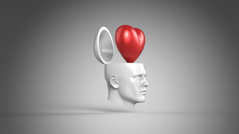 Mind Animation