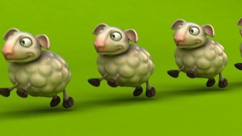 Fun sheep Animation