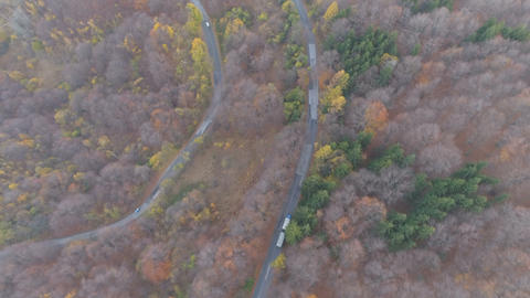 Winding road through forest in the autumn. Transportation truck driving on Live Action